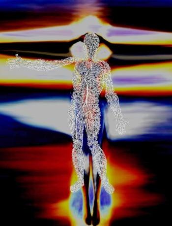 Nervous System Angelus
